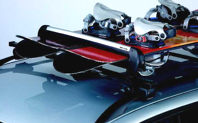 McKinley Ski Rack Accessory