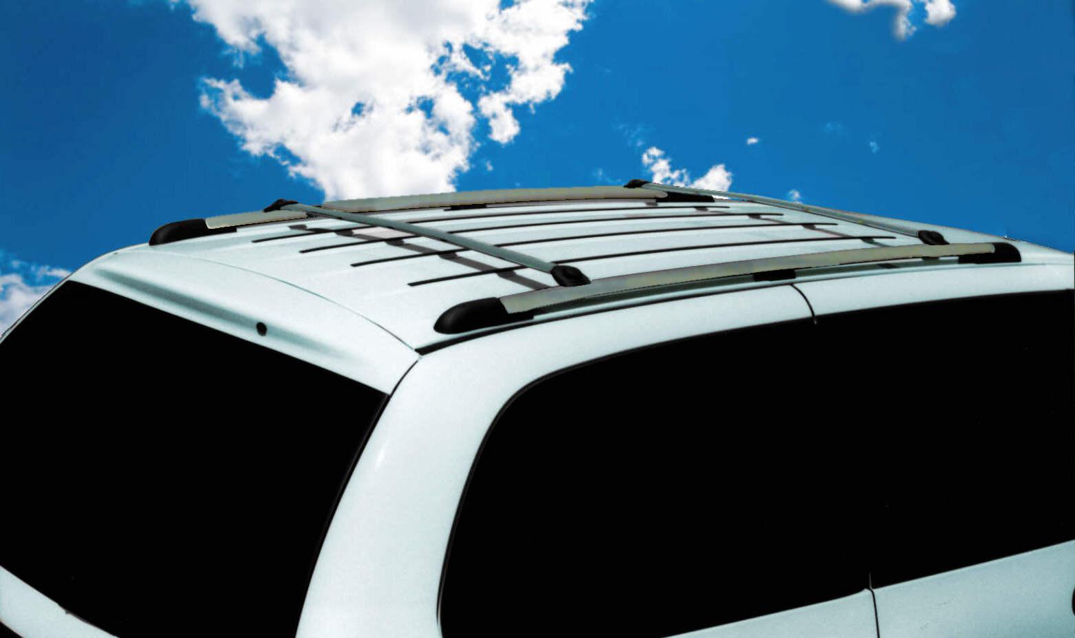 DynaSport Roof Rack - brite